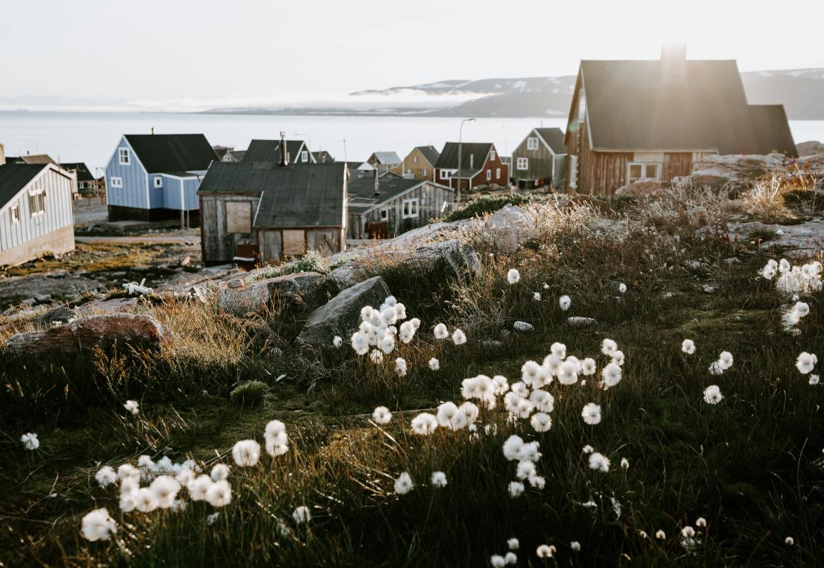 Traditional Greenlandic houses in summer with sunshine and flowers